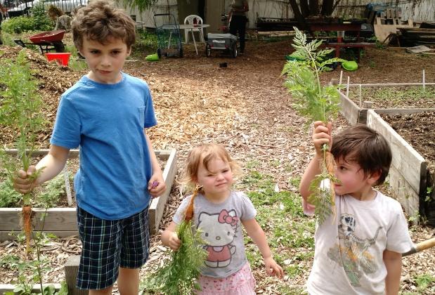 The garden was hopping lastSunday!